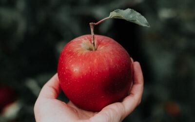 Jesus fikk ingen til å føle seg som en epleskrott